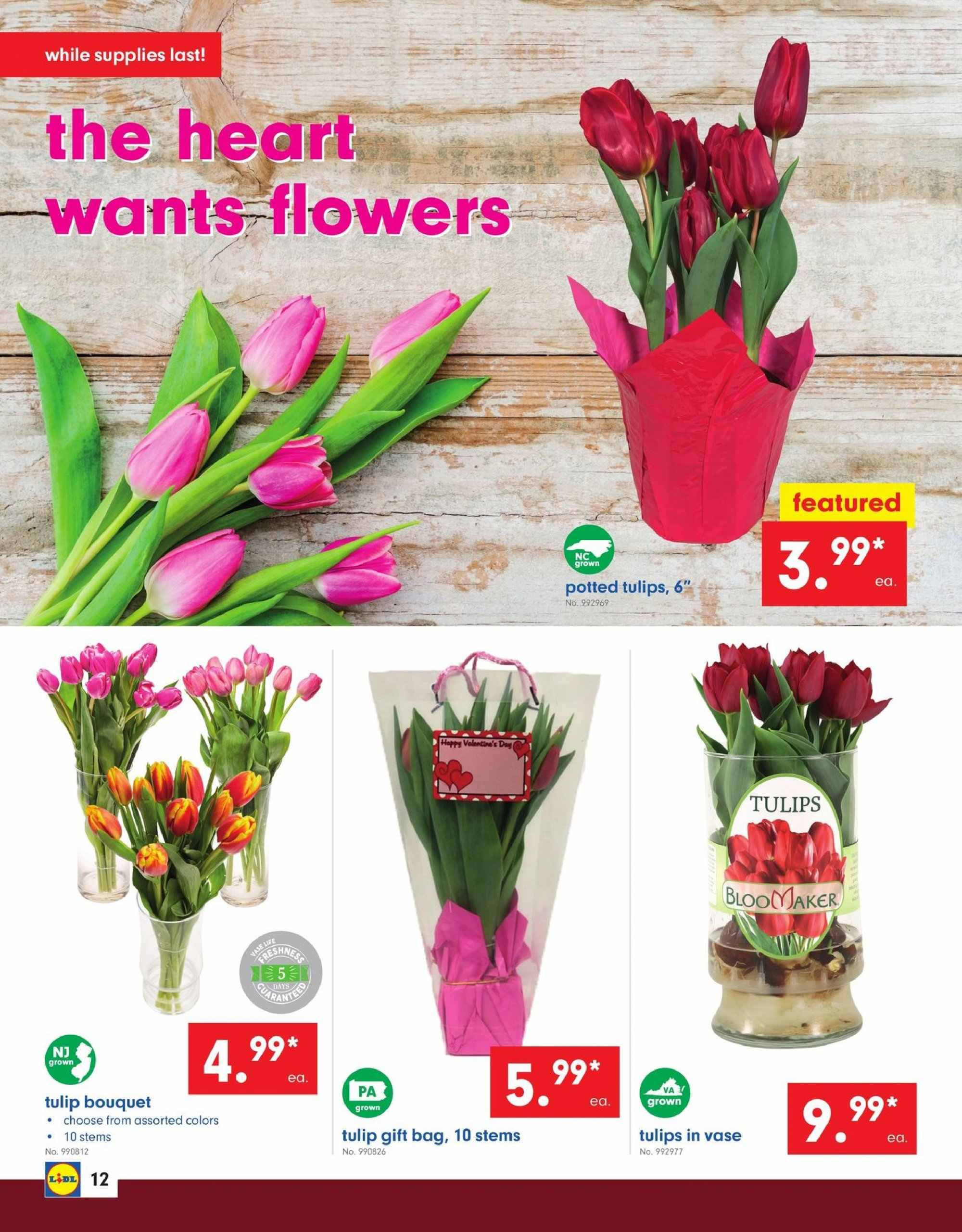 Lidl Flyer - 02.06.2019 - 02.12.2019 - Sales products - bag, gift bag. Page 12.